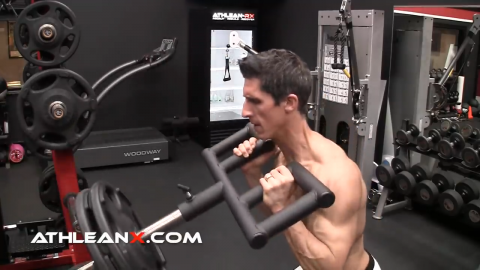 Viking press for shoulders power