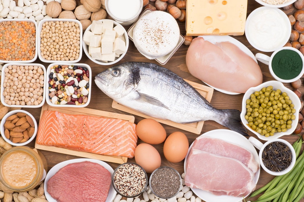 protein sources in food meat and vegetarian