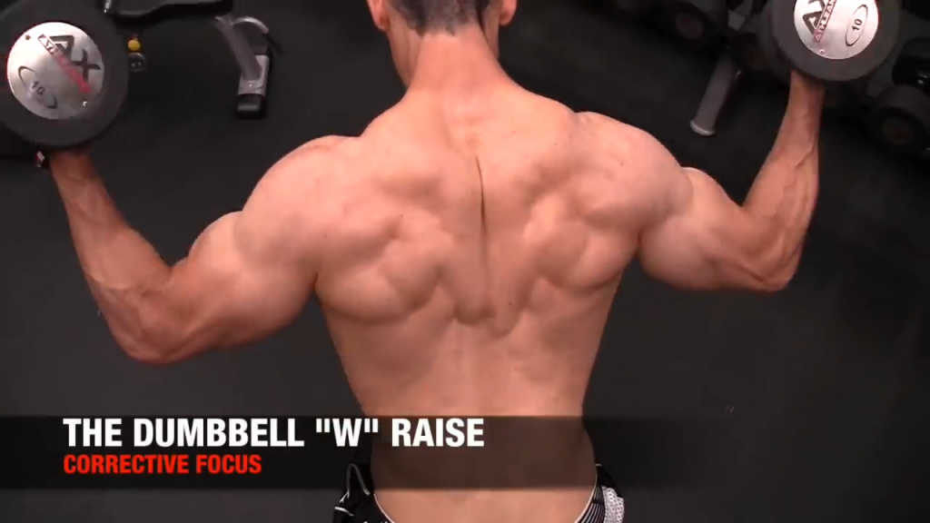 dumbbell w raise for rotator cuff and back