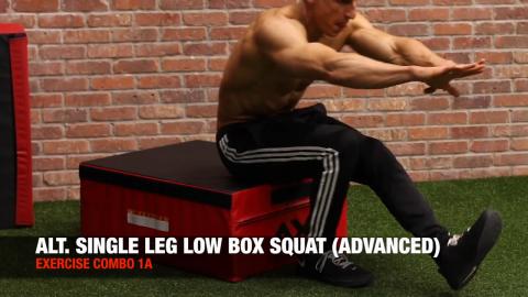 alternating single leg box squat