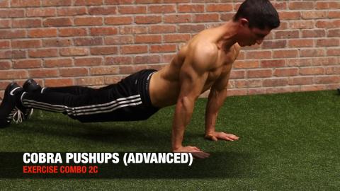 cobra pushups