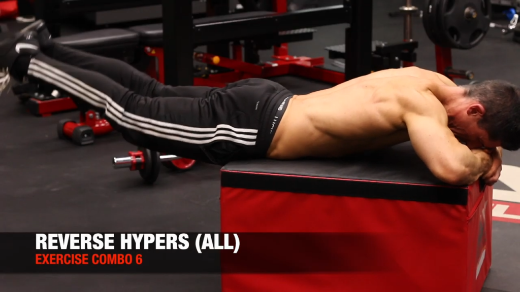 reverse hyperextension exercise