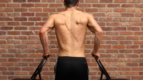 upright dips without weight