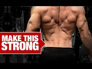 Best Lower Back Workout