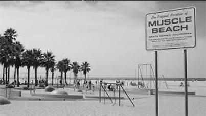 Iron Muscle Beach
