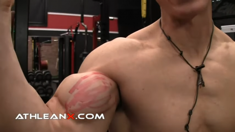biceps short head