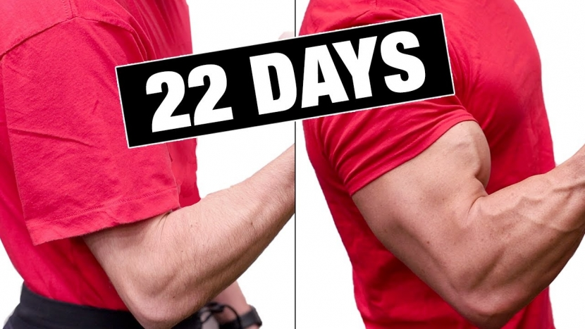 How To Build Bigger Arms Fast