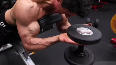 incline waiter curl 6 pulses