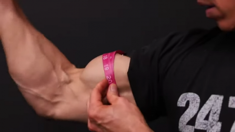 measure your biceps