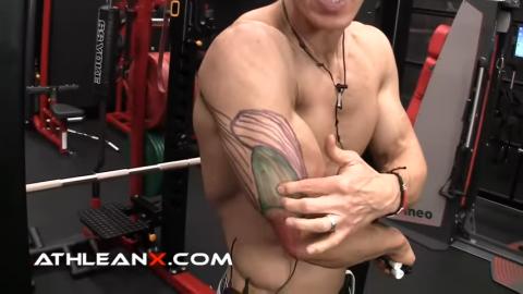 triceps medial head