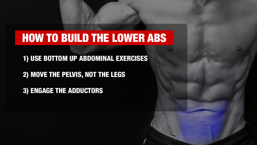 how to build the lower abs