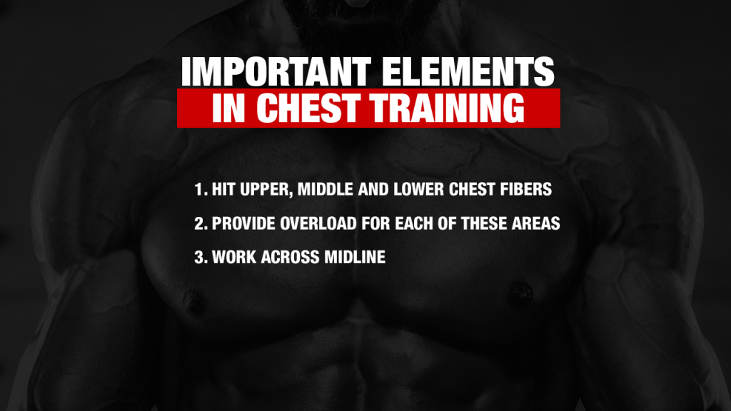 how to train the chest